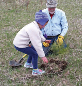 Tree planting at Crossroads at Big Creek